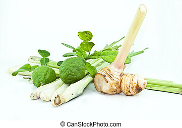 Thai food ingredient for Tom yum kung isolated in white backgroud ,galangal, lemongrass, bergamot