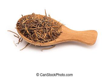 Thai herb name nelumbo nucifera gaertn pollen in wooden spoon isolated on white background. Thai herb medicine concept.