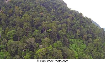 Thai jungle hill aerial video clip