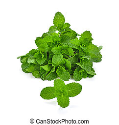 Thai peppermint on white background