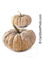 Thai pumpkin