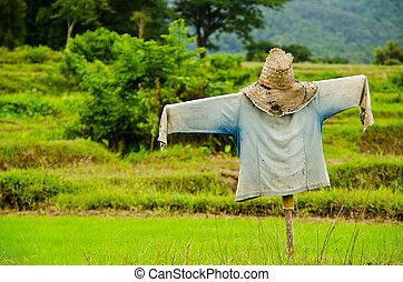 Thai Scarecrow