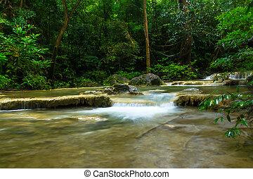 thaiföld, vízesés, erdő