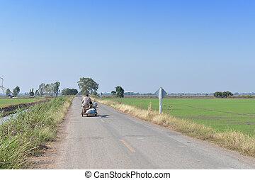 thailand, arbeit, fahren, landwirt