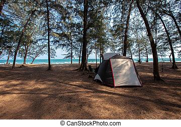 Thailand, Backgrounds, Beach, Beauty, Bench, Camping, Tent, Summer, Backgrounds