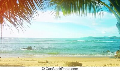 Thailand, Phuket Island. Sunny beach with palm trees without people