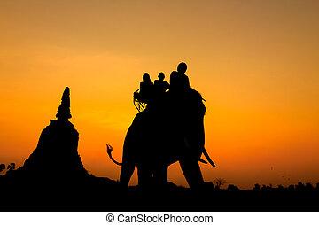thailand., silhouette, ayutthaya, elefanti