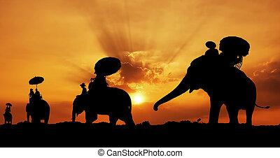 thailand, silhouette, elefant