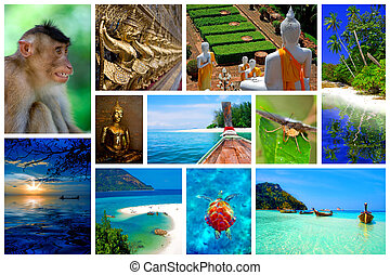 Thailand - Collage of pictures from the beauty of Thailand