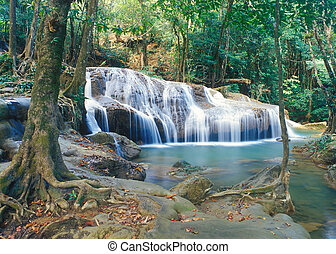 thailand, waterval, jungle