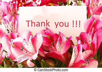 """brief """"thank you"""" on the background of a flower"""