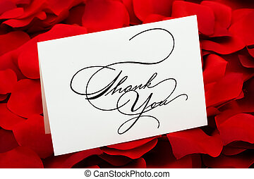Thank You - A white thank you card sitting on a red rose...