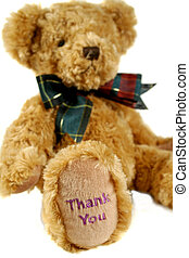 Teddy bear with thank you on his paw.