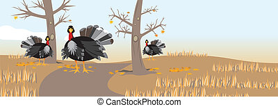 Thankgiving header - An image of turkeys in a field with...