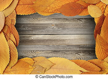 thanksgiving backdrop with cherry leaves