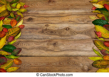 Thanksgiving background with frame of fall leaves, copy space