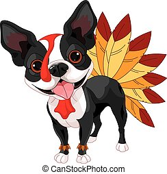Thanksgiving Boston Terrier - Illustration of cute Boston...