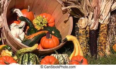 Thanksgiving Day spirit of the fall - picture of bales of hay and assorted pumpkins, squashes, gourds, corncobs Thanksgiving Day decoration.