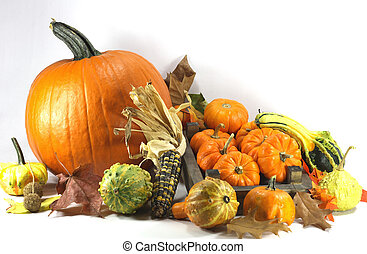 Thanksgiving Day. - . Traditional symbols of Thanksgiving...