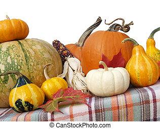 Thanksgiving gourds and pumpkins