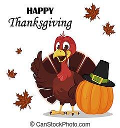 Thanksgiving greeting card with a turkey bird standing near pumpkin in a Pilgrim hat