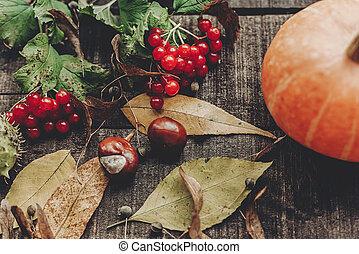 thanksgiving or halloween concept greeting card flat lay. beautiful pumpkin with leaves and berries on rustic wooden background, top view. space for text. cozy autumn mood. fall holiday