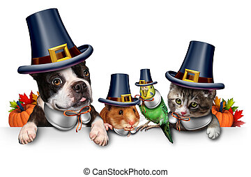 Thanksgiving Pet Celebration - Thanksgiving pet celebration...