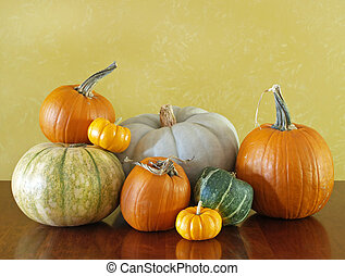 Thanksgiving squash and pumpkins