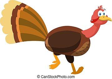 Thanksgiving Turkey Bird Cartoon Character Running