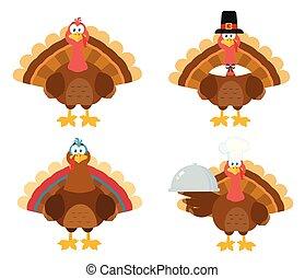 Thanksgiving Turkey Bird Collection - 1