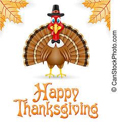 thanksgiving turkey bird vector illustration