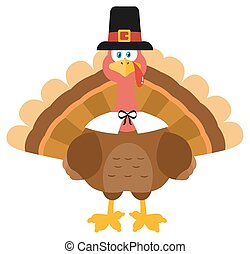 Thanksgiving Turkey Bird Wearing A Pilgrim Hat