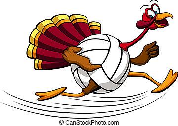 Thanksgiving Turkey Volleyball