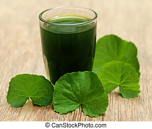 Medicinal thankuni leaves of Indian subcontinent with extract