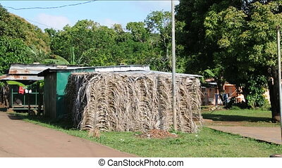 thatch house barefoot boy running - thatch building...