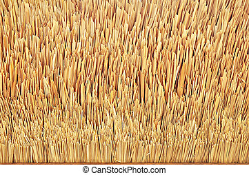 Tip of thatch roof texture