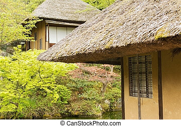 thatched, 家