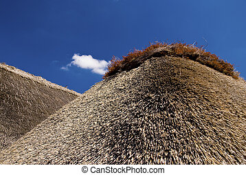 thatched 屋根