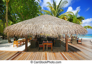 thatched, casa