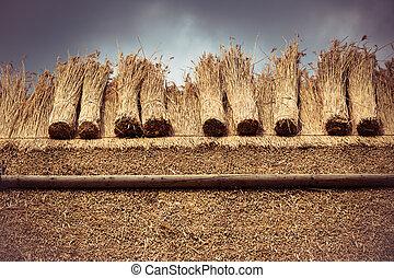 thatched dak, met, stro, en, bundel, riet