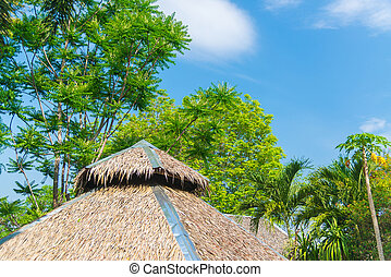 Thatched roof house and a green garden with blue sky in countryside.