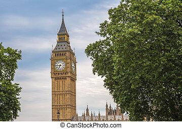 the, 大本鐘, 由于, 樹, 倫敦, 英國