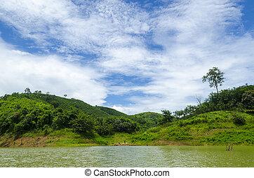 the, 领域, 在中, 热带, 绿色的森林, 国家公园, 在中, 泰国