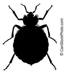 the, 黑色, 黑色半面畫像, ......的, a, bedbug, 如, 插圖