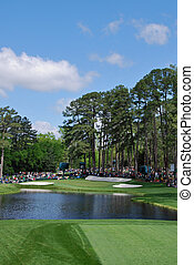 the pond and green at the Augusta National Golf Club, site of Greg Norman's downfall
