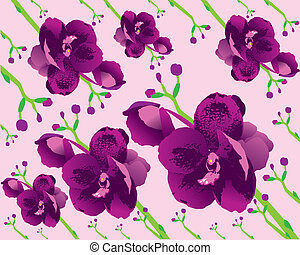 Background orchid - The abstract of Background orchid