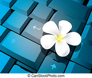 Flower on keyboard - The abstract of Flower on keyboard