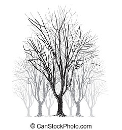 The abstract of large bare tree without leaves - hand drawn