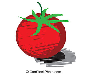 Sketch of tomato vector