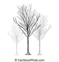 Tree - Hand Drawn vector
